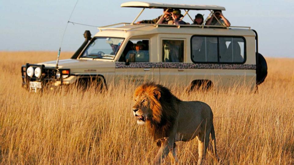 Ngulia Safaris Lodge