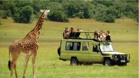 3 Days Masai Mara Safaris From Nairobi