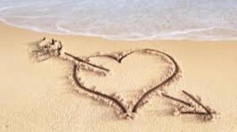 Valentine Holidays